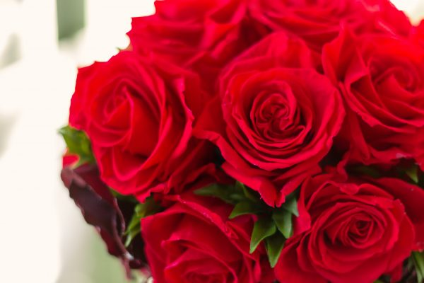 母の日ギフトに選ぶバラ